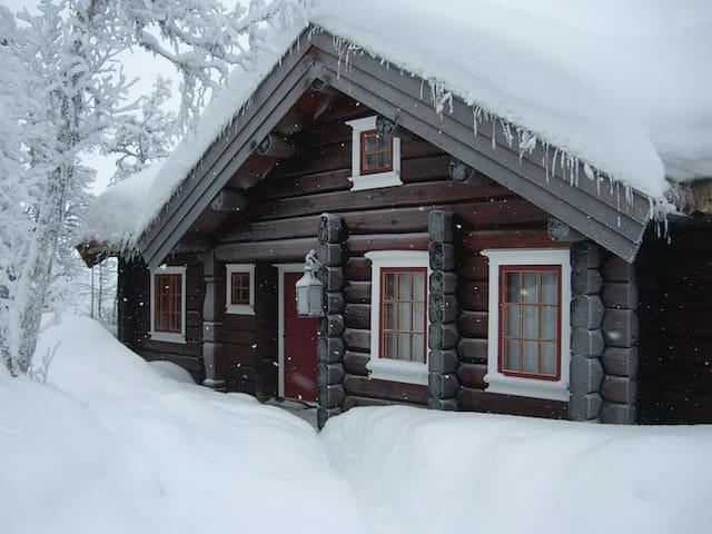 Tømmerhytte (120 m2)  strøm og vann. - Ål