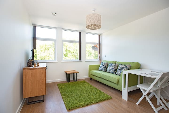 Modern 1 Bed Apartment in City Centre - 307