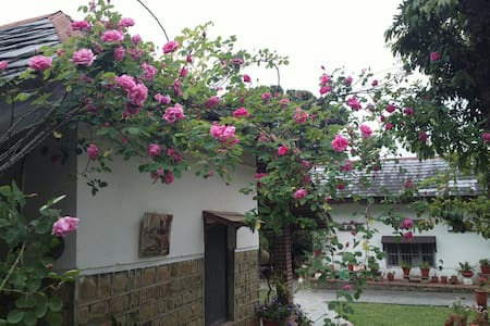 Middle Cottage in scenic tea plantations of Darang - Darang Khas - Bungalow