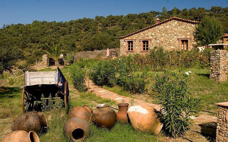 Casa Aguila - Molino río Alájar - Alájar - Домик на природе