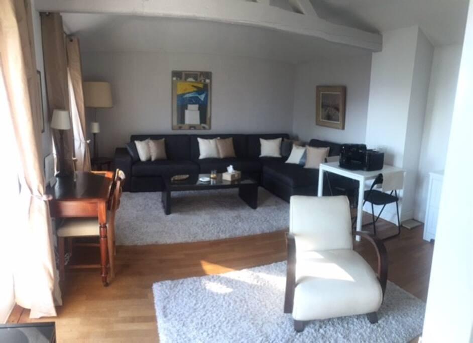 La pièce principale canapé lit 2 places