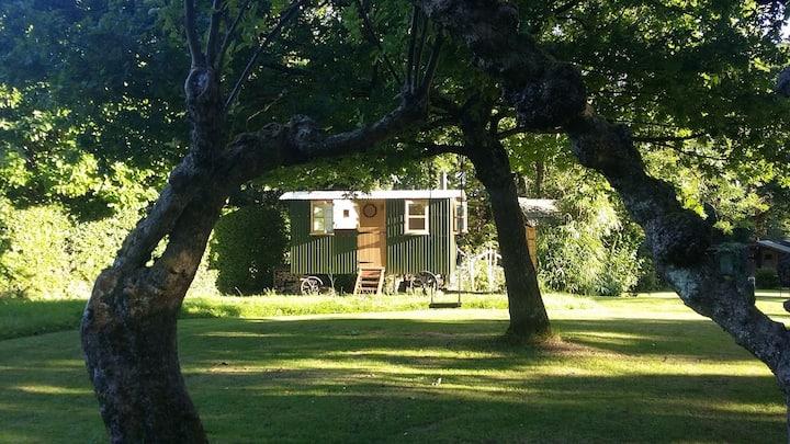 Maggie's Hut, Fittleworth.