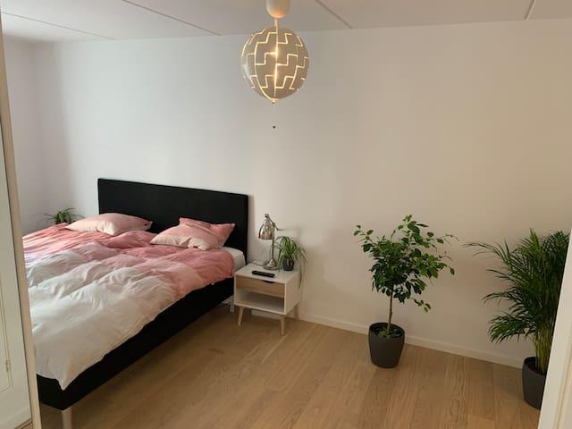 Stor Soveværelse med egen toilet+TV/Big Sleeping room with its own restroom+TV