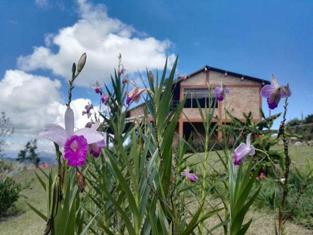Tery Yagua, Naturaleza y tranquilidad