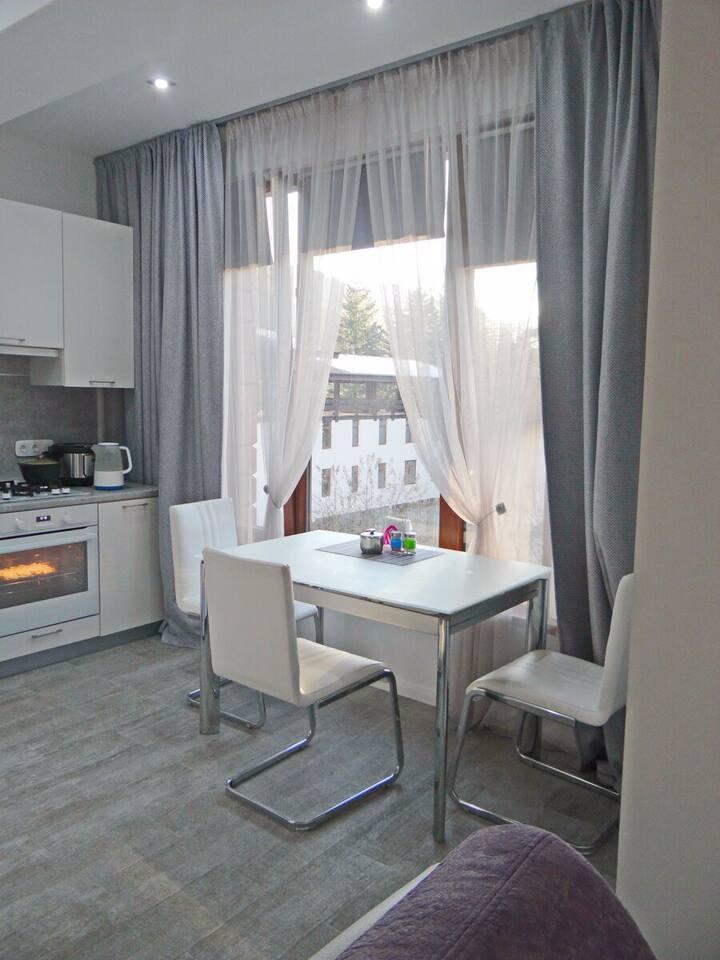 Уютная квартира в центре Красной Поляны