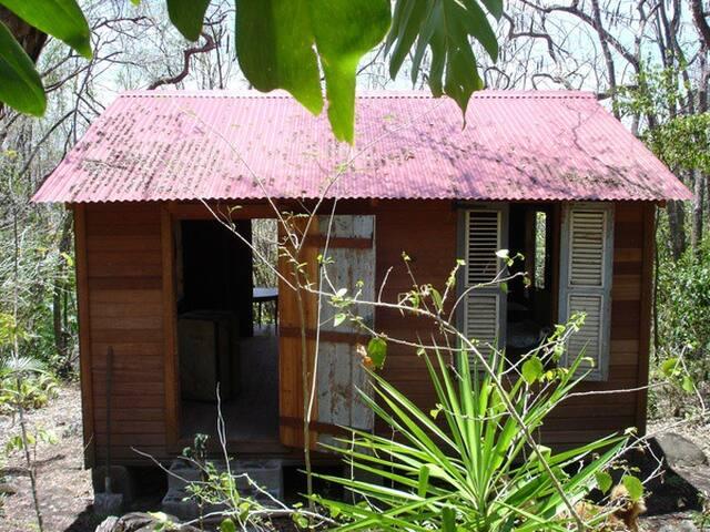 Habitation Massieux -La Case - Basse-Terre - Cabane