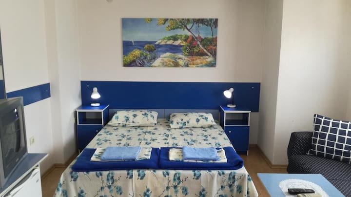 Blue Apartments ( Room 4 )