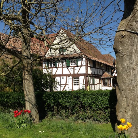 Maison typique + voiture à 2 pas de Strasbourg ! - Vendenheim - Haus