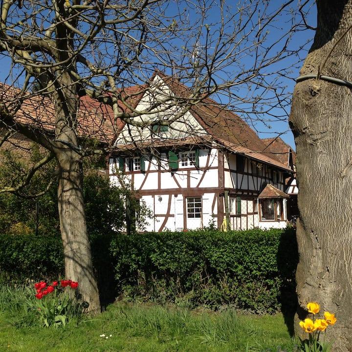 Maison alsacienne idéale pour les familles/groupes