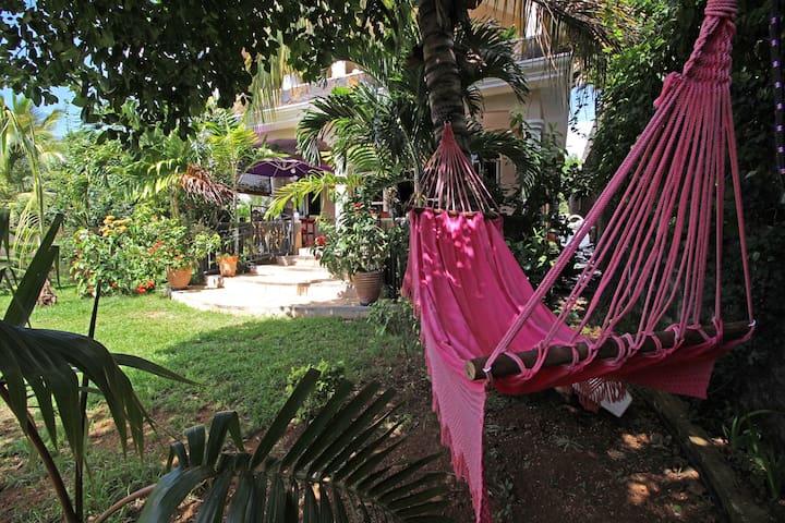 Hamac et jardin