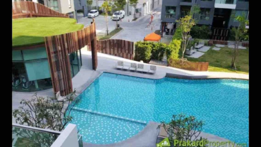ENTIRE CONDOMINIUM, Free Wifi/Gym&Pool/Parking 3