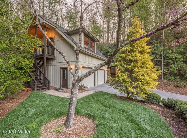 The Tree House at Mountain Lens