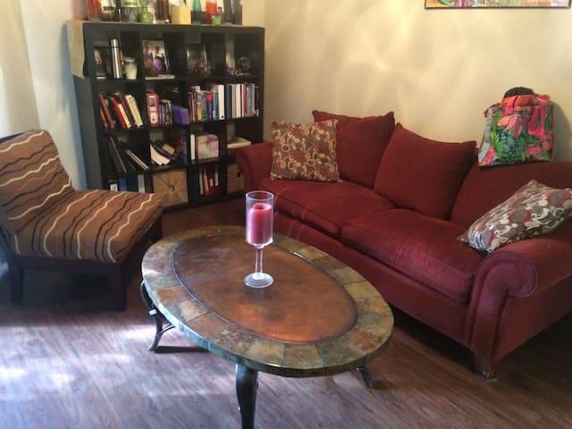 1 bedroom apartment by 360 bridge - Austin - Apartamento