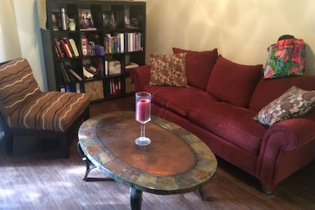 1 bedroom apartment by 360 bridge - Austin