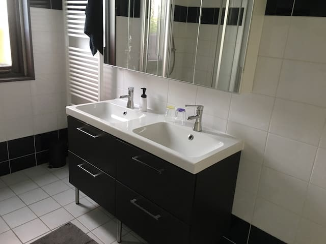 modern shared bathroom with double sink, a really nice shower and a toilet