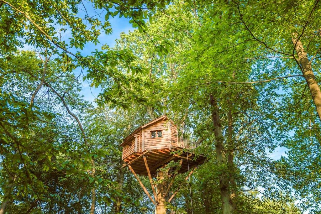Cabane à 13 mètres de hauteur