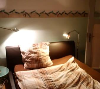 Haus Hibiskus: Zimmer im Zentrum von Aschaffenburg - Aschaffenburg - 獨棟