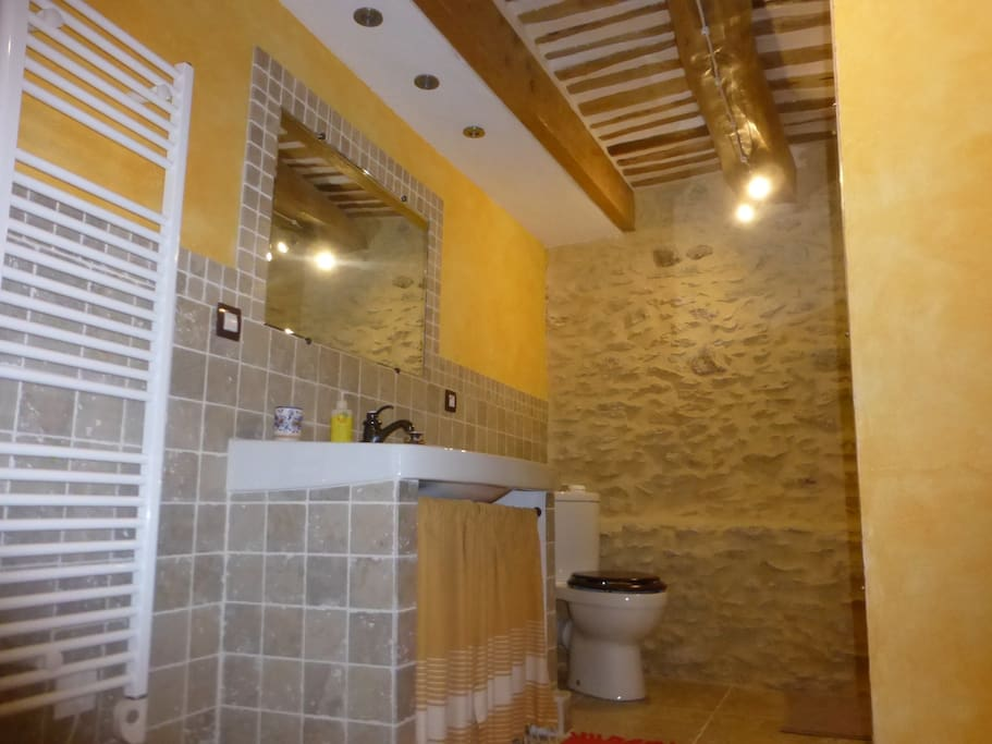 Salle de bain spacieuse avec douche italienne