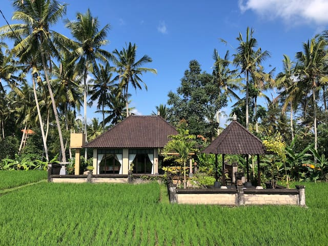 "Legendary house ""Eat Pray Love"" w/rice fields view"
