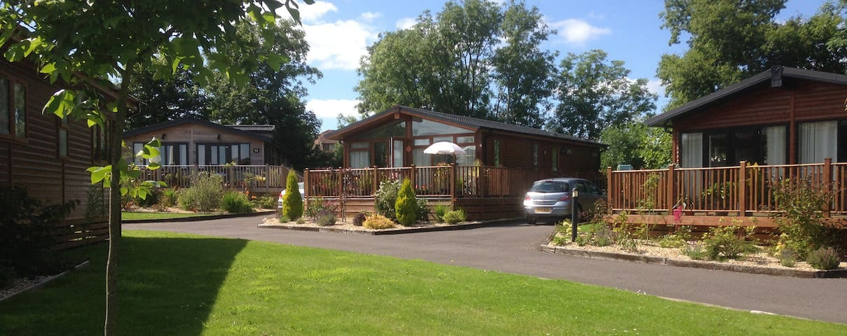 2 Bedroom Signature lodge at Blossom Hill - Honiton - Chalet