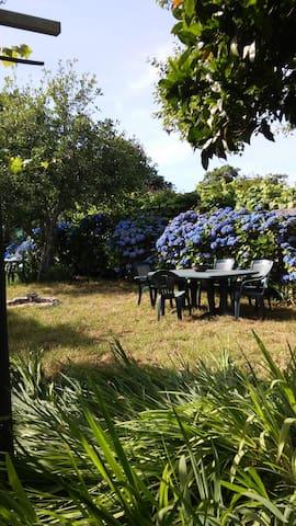 Alquilo habitaciones en casa grande con jardin - Pontevedra - บ้าน