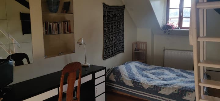 Bright and cozy room in centre of Ferney-Voltaire.