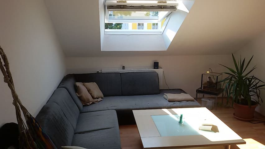 Sunny Appartment close to the city center + Aasee - ミュンスター