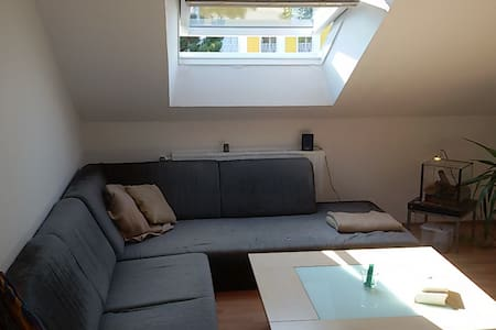 Sunny Appartment close to the city center + Aasee - Münster