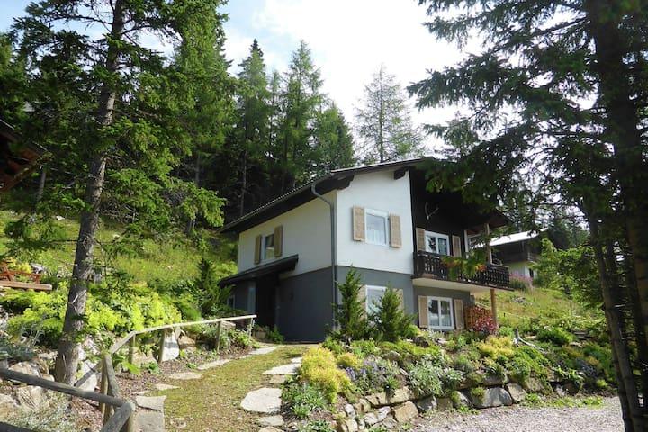 Beautiful apartment in the ski and hiking paradise Klippitztörl