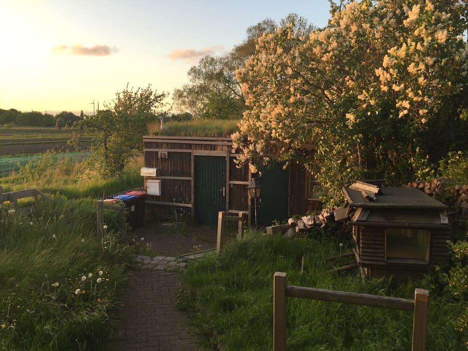 der Blick aufs Gartentor von der Haustür aus
