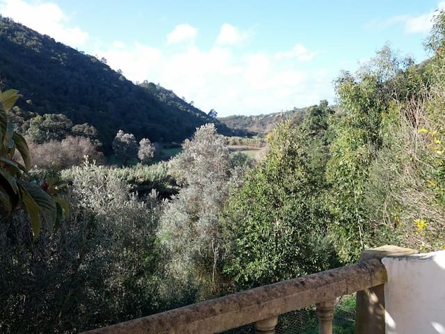 Garlic Valley Getaway - S.Teotónio - Casa de campo