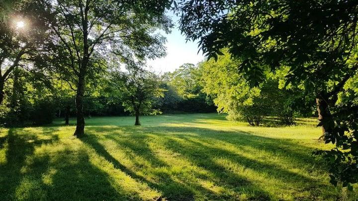 Gite in quiet nature - Amazing property