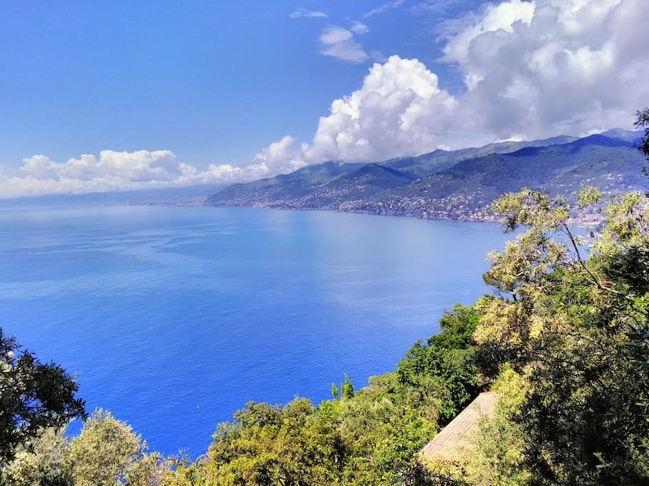 view from San Rocco's church