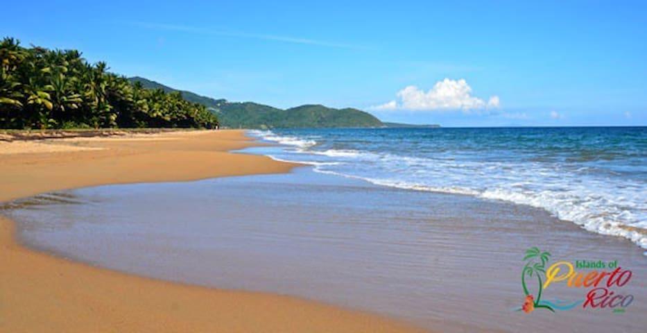 Playa Punta tuna, a solo 4 minutos en auto!