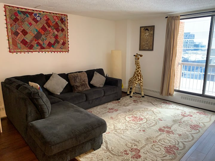 Nice, Spacious, Well Situated Apartment Downtown!