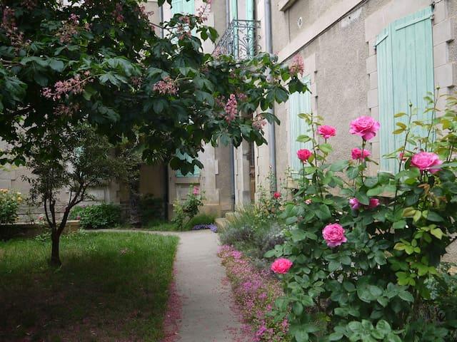 Le jardin d'entrée