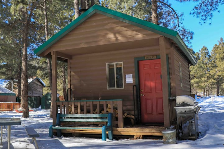 Pinyon Cabin in the Woods