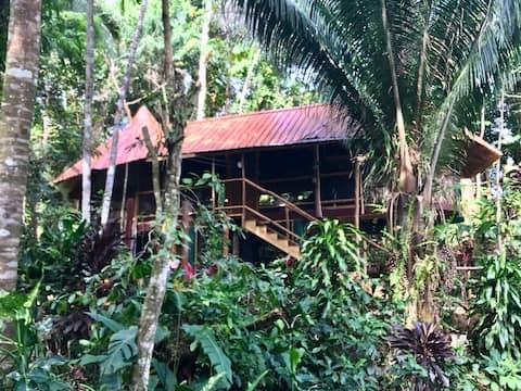 The Family Nest @ Pineapple Hill