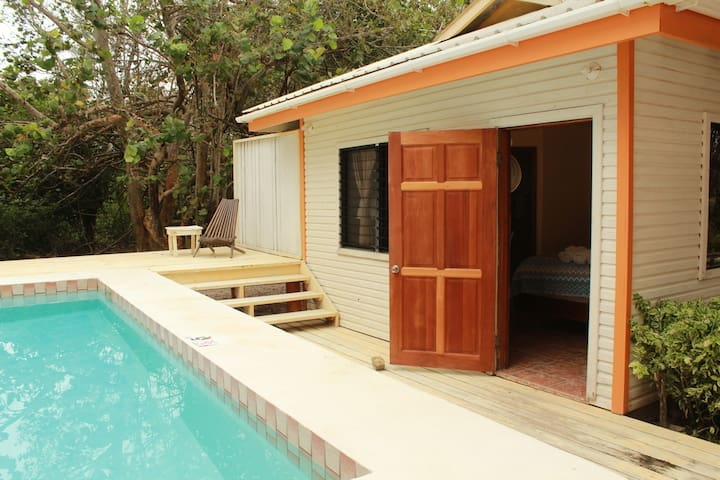 Poolside and Beach at the Dreamsicle Studio