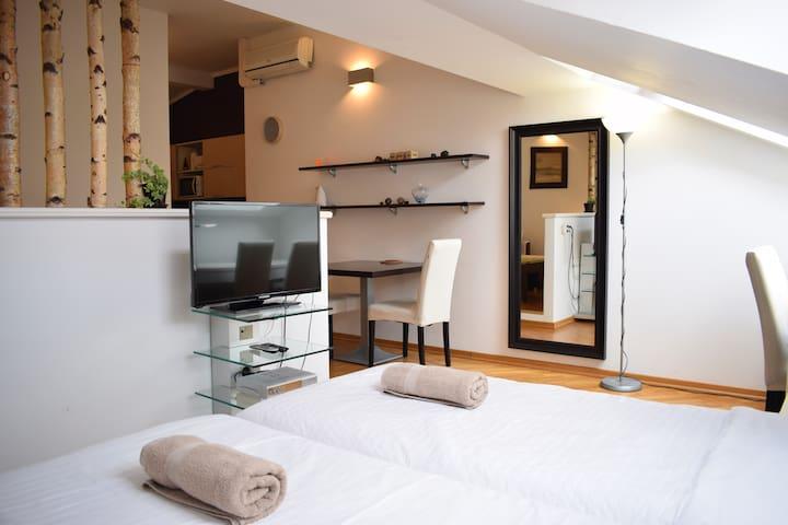 Bright apartment 2 near the heart of Prague