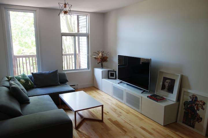 salon - living room