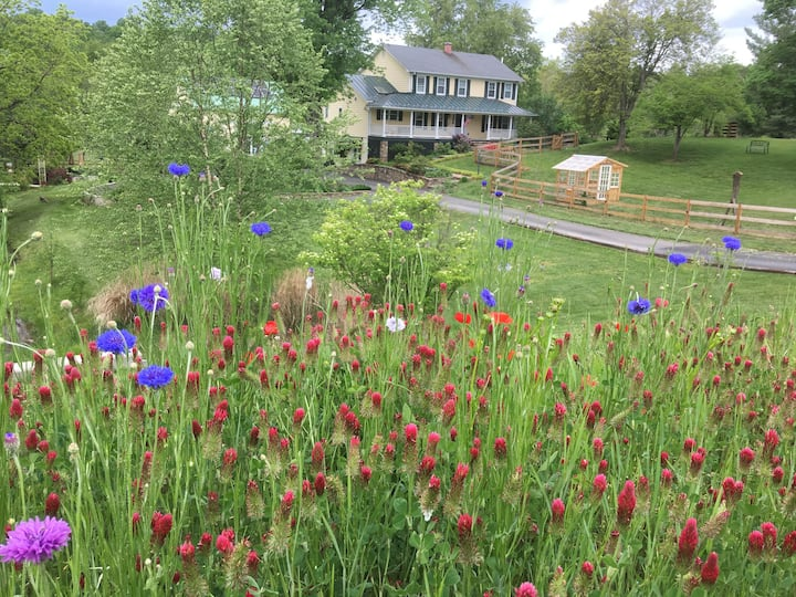 Farm Retreat in the Heart of Loudoun Wine Country!
