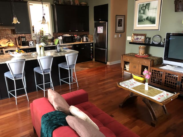 Gorgeous apartment in Andersonville