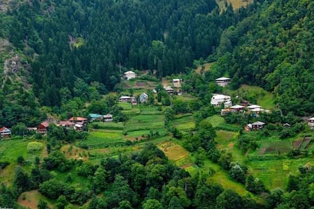 Чудо в горах Аджарии, семейная гостиница ARGINETI!