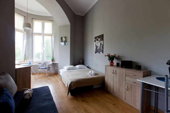 Beautiful Room with Window Bay - Wrocław - Appartement