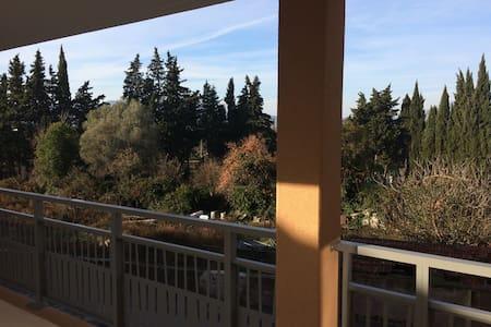 Appartement avec une chambre et une terrasse - Puget-sur-Argens