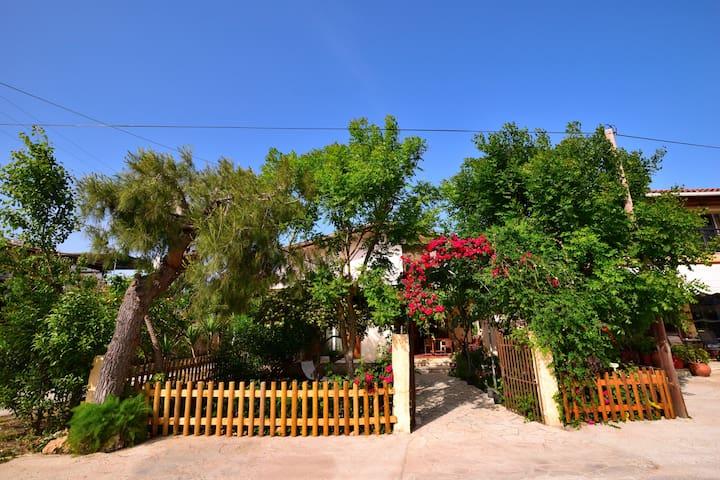 Casa Di Leon