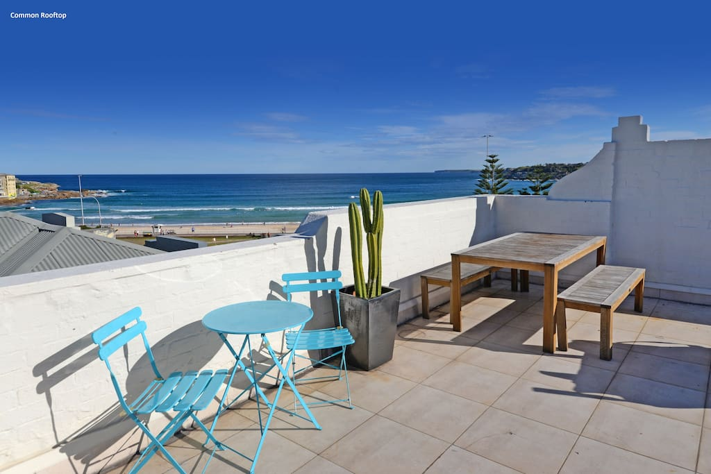 Welcome to Bondi Belle - RIGHT ACROSS THE ROAD FROM BONDI BEACH!!!!!  This is the view from common roof top terrace