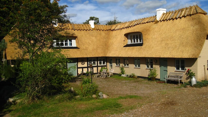 Old house in the country - Assens - House