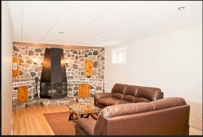 Living Area (Lower Level)